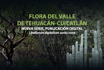 NUEVA SERIE, PUBLICACIÓN DIGITAL